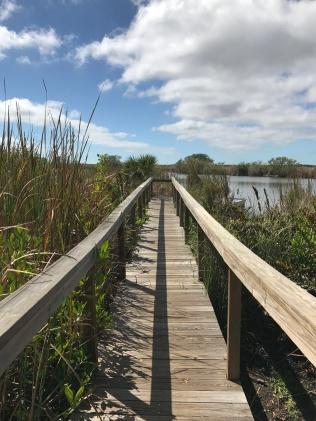 Plankierpad door stukje wetlands