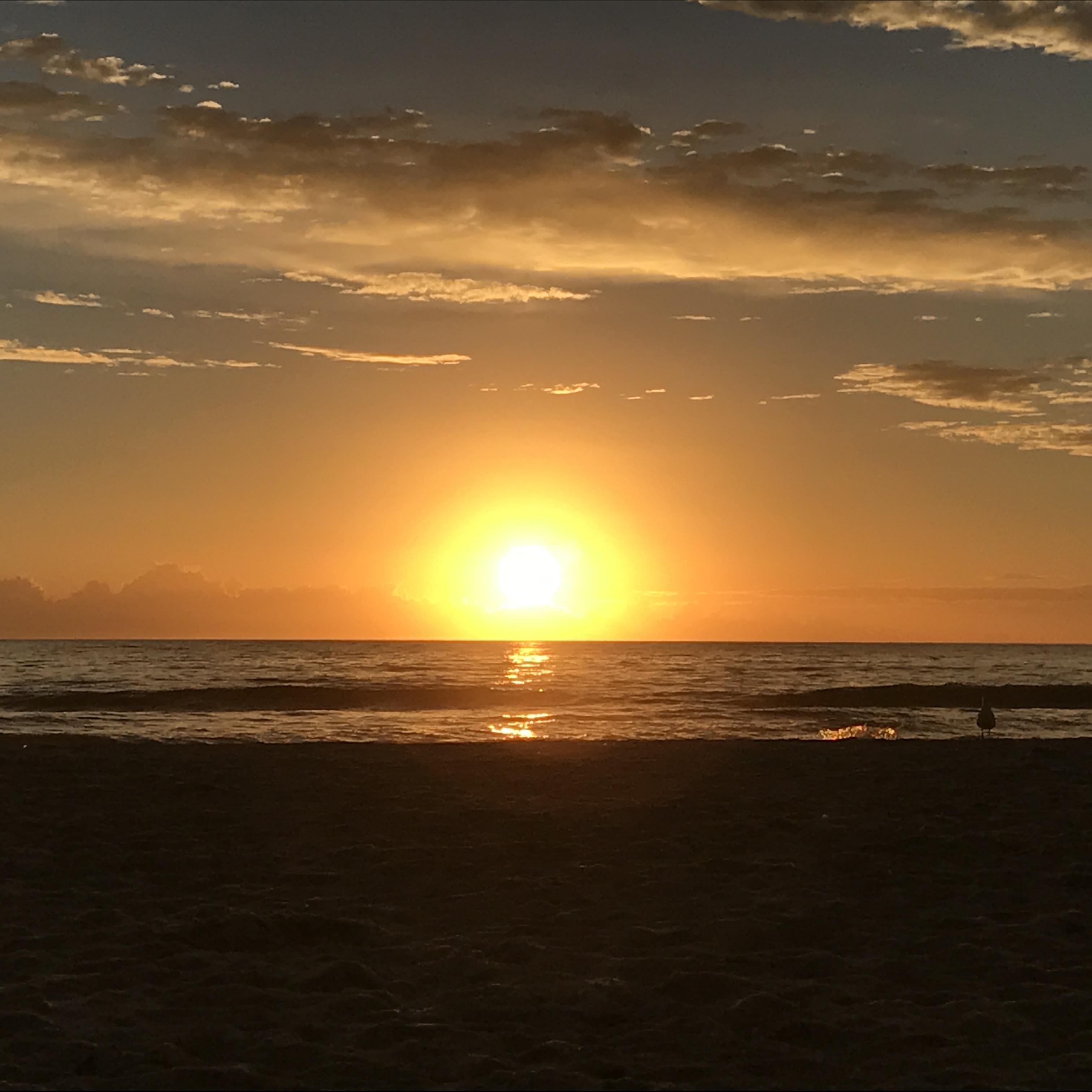 St Pete Beach Florida Hotels